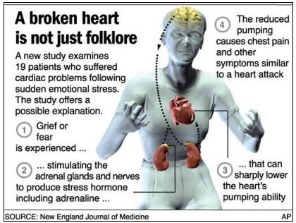 http://www.scientificblogging.com/cash/the_science_of_the_broken_heart